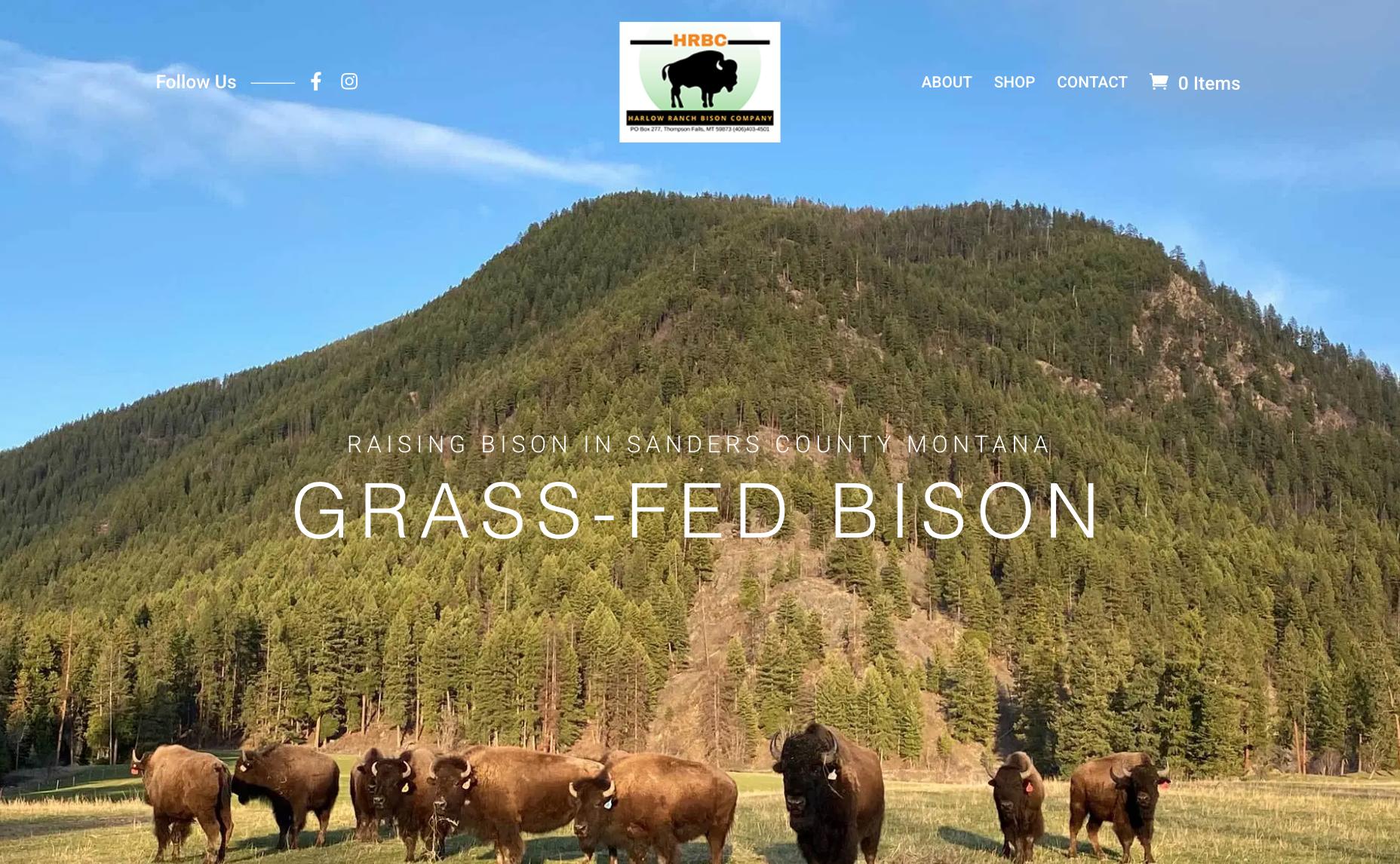 Grass Fed Bison website screenshot